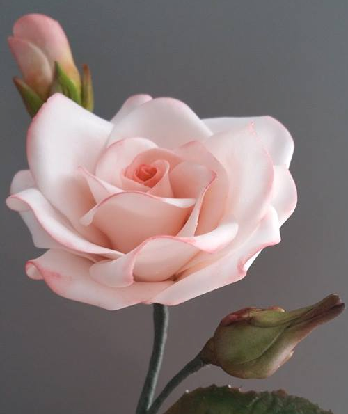 Gumpaste Roses and Buds